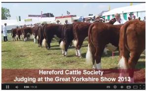 YorkshireShow